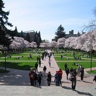 Enhanced Cleaning and Disinfecting Protocols Laid Out for the University of Washington Show the Future of College Cleaning
